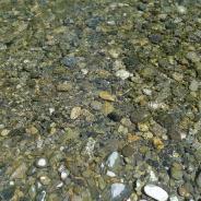 Indian Creek streambed