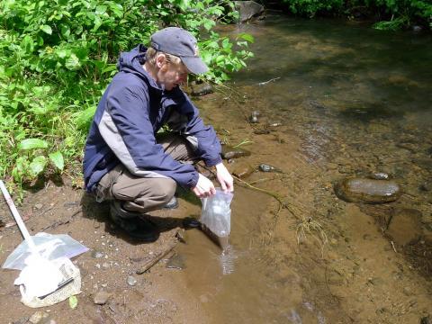 Sampling sediment in Cogswell Creek.