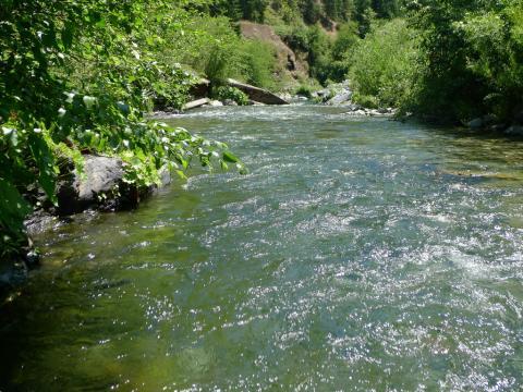 Indian Creek at Doolittle Creek bridge