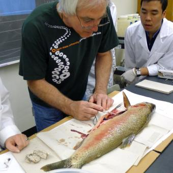 Craig Banner (ODFW) demonstrating a fish dissection.