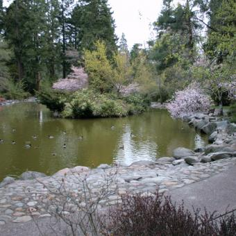 Upper Duck pond, Lithia Park, Ashland