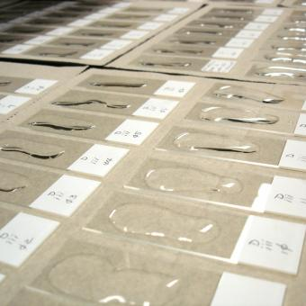 Waterborn actinospores being dried onto glass slides.